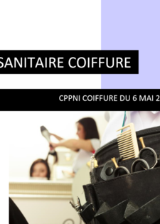 FICHE SANITAIRE COIFFURE.PNG